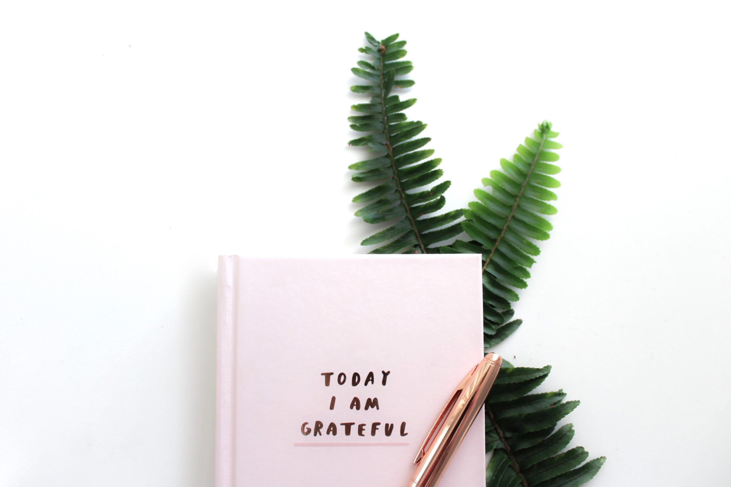"""Kimberlite Enterprises blog, a diary with the words """"Today I am grateful"""" written on the front."""
